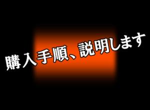 「PPCマネージャー」(河野広和氏、ウダガワ製作所?)の購入手順